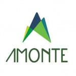 Amonte