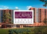 eucalipto-parque-barro-blanco (1)
